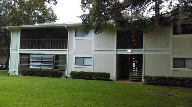 6013 Laketree Lane G, Temple Terrace, FL 33617 (MLS #T3320365) :: Zarghami Group