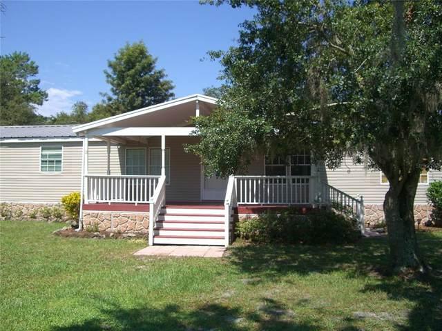 14717 Dupree Road, Wimauma, FL 33598 (MLS #T3320373) :: Zarghami Group