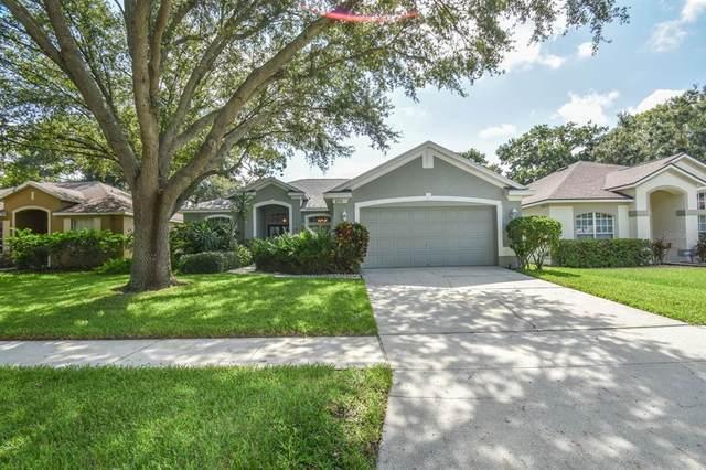 6931 Potomac Circle, Riverview, FL 33578 (MLS #T3320375) :: Zarghami Group