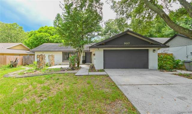 907 Black Knight Drive, Valrico, FL 33594 (MLS #T3320379) :: The Robertson Real Estate Group