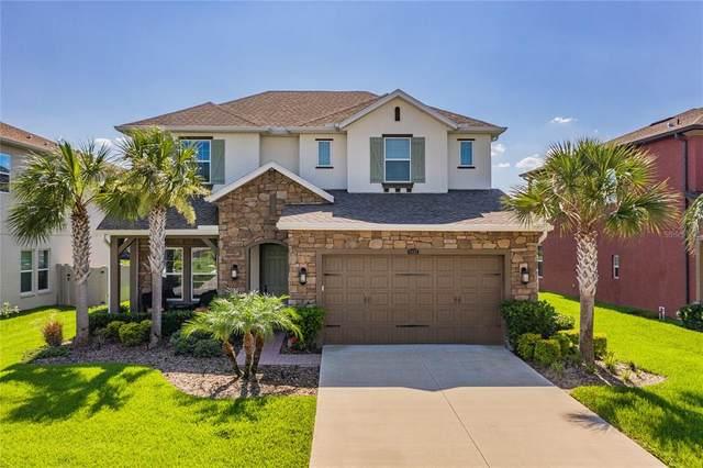 4035 Empoli Court, Wesley Chapel, FL 33543 (MLS #T3320388) :: Vacasa Real Estate