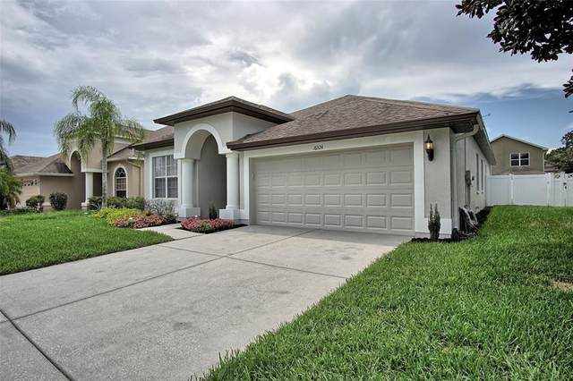 16324 Dinsdale Drive, Spring Hill, FL 34610 (MLS #T3320389) :: Cartwright Realty
