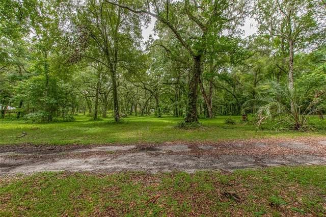 22293 Croom Road, Brooksville, FL 34601 (MLS #T3320396) :: Bustamante Real Estate