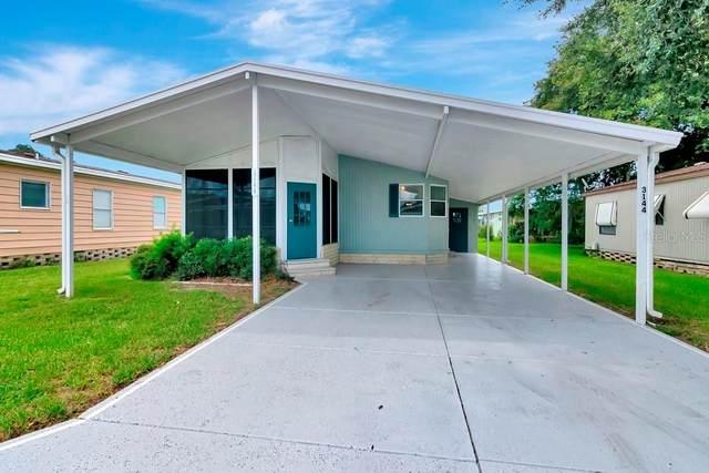 3144 Moonlight Street, Wesley Chapel, FL 33543 (MLS #T3320402) :: Zarghami Group