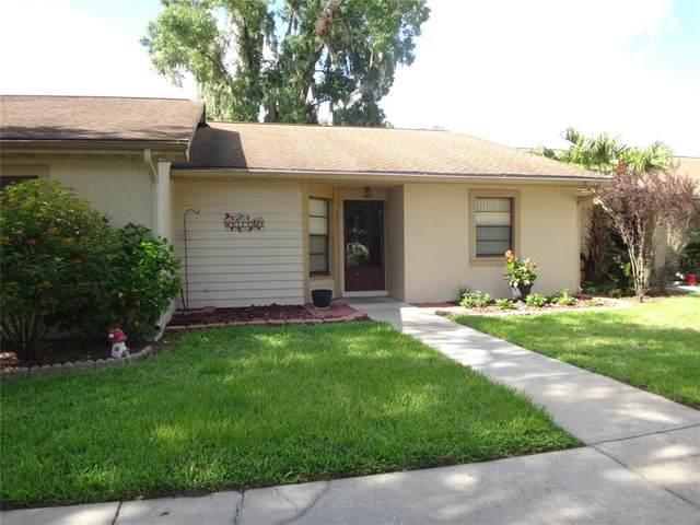 2011 Cedar Run Drive, Plant City, FL 33563 (MLS #T3320409) :: Baird Realty Group