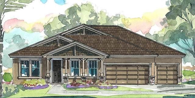 4615 Ridgewood Estates Avenue, Valrico, FL 33596 (MLS #T3320414) :: Zarghami Group