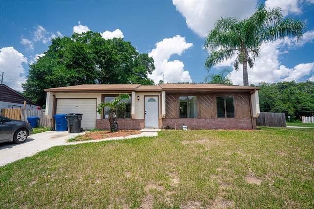 1223 Piney Branch Circle, Valrico, FL 33594 (MLS #T3320417) :: Zarghami Group