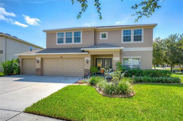 5832 Tulip Flower Drive, Riverview, FL 33578 (MLS #T3320438) :: Cartwright Realty