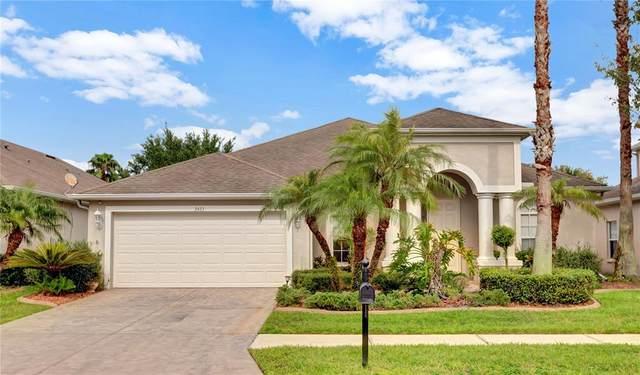 3433 Fiddlers Green Loop, Wesley Chapel, FL 33544 (MLS #T3320439) :: Vacasa Real Estate