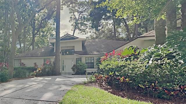 16817 Woburn Lane, Lutz, FL 33549 (MLS #T3320446) :: The Kardosh Team