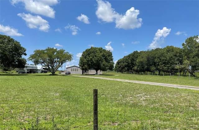 15201 Mcgrady Road, Wimauma, FL 33598 (MLS #T3320457) :: Zarghami Group