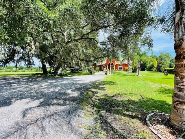 12526 Fort King Road, Dade City, FL 33525 (MLS #T3320461) :: Heckler Realty
