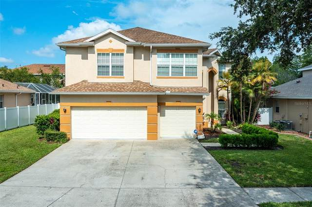 6103 Native Woods Drive, Tampa, FL 33625 (MLS #T3320470) :: Zarghami Group