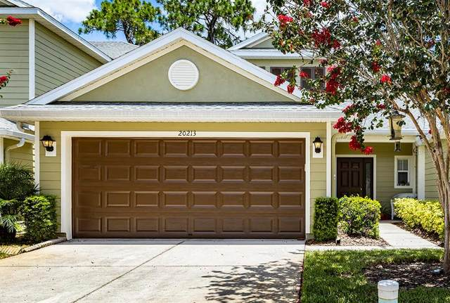 20213 Indian Rosewood Drive, Tampa, FL 33647 (MLS #T3320478) :: The Hustle and Heart Group