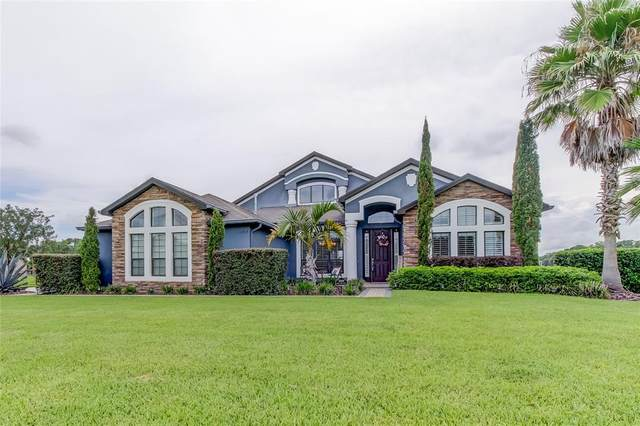 10909 Brice Tree Court, Lithia, FL 33547 (MLS #T3320512) :: The Robertson Real Estate Group
