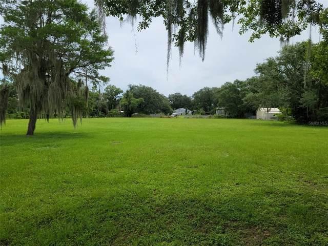 11429 Lithia Pinecrest Road, Lithia, FL 33547 (MLS #T3320528) :: Zarghami Group