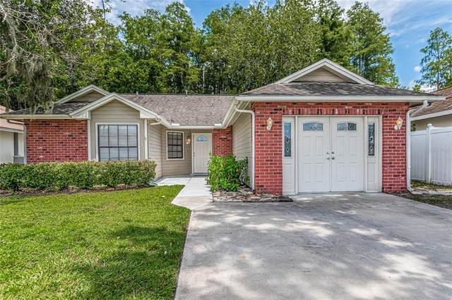 5337 Southwick Drive, Tampa, FL 33624 (MLS #T3320532) :: The Hustle and Heart Group