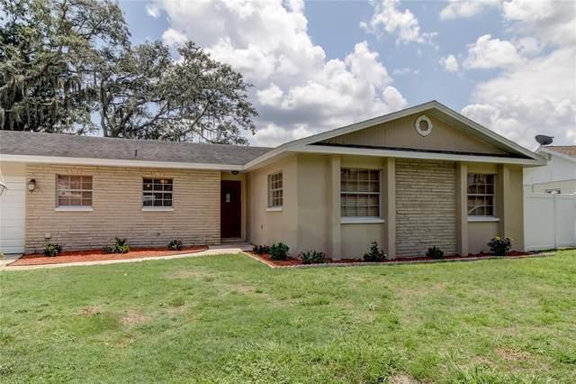 3514 Plainview Drive, Brandon, FL 33511 (MLS #T3320534) :: The Robertson Real Estate Group