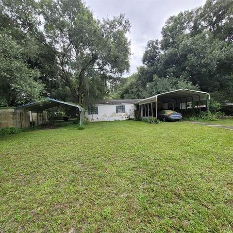 8704 Gardner Road, Tampa, FL 33625 (MLS #T3320541) :: Everlane Realty