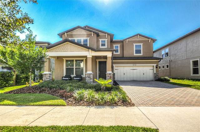 18740 Birchwood Groves Drive, Lutz, FL 33558 (MLS #T3320568) :: The Robertson Real Estate Group