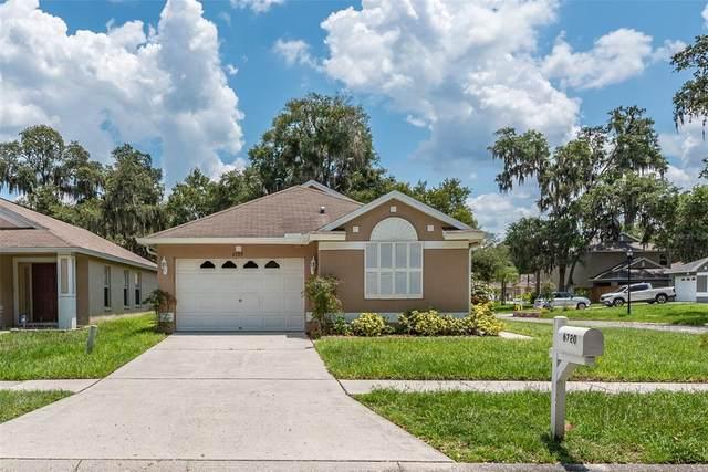 6720 Summer Haven Drive, Riverview, FL 33578 (MLS #T3320575) :: Zarghami Group