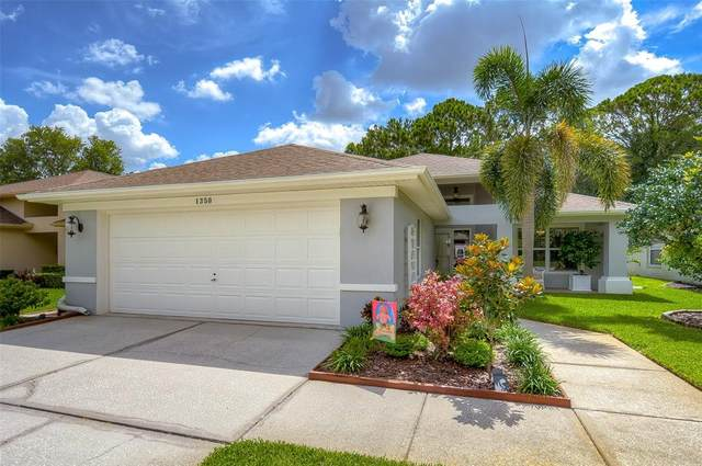 1350 Stroud Court, New Port Richey, FL 34655 (MLS #T3320576) :: RE/MAX Elite Realty