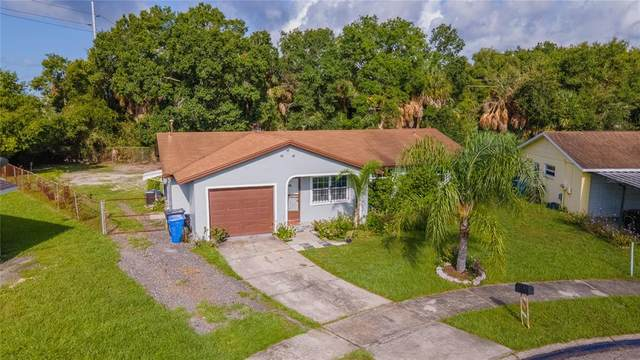 5601 Cookman Drive, Tampa, FL 33619 (MLS #T3320577) :: Global Properties Realty & Investments