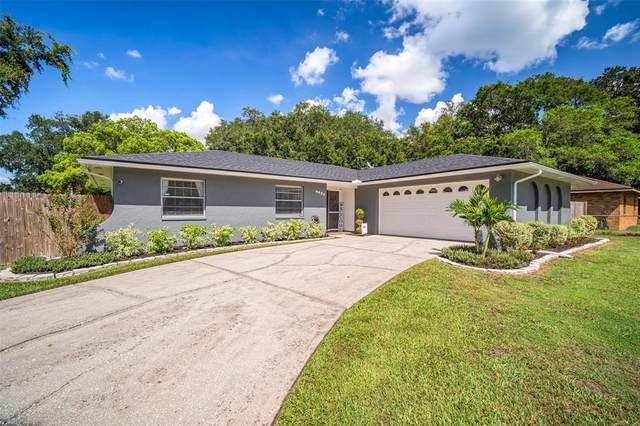 6622 Shadow Wood Run, Lakeland, FL 33813 (MLS #T3320596) :: RE/MAX Elite Realty