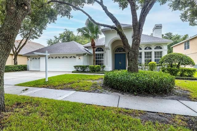 19114 Mandarin Grove Place, Tampa, FL 33647 (MLS #T3320598) :: Delgado Home Team at Keller Williams