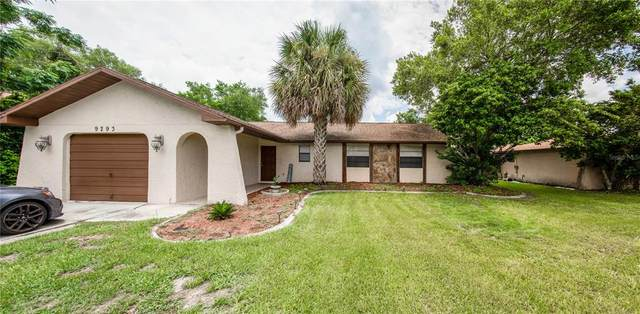 9293 Spring Hill Drive, Spring Hill, FL 34608 (MLS #T3320602) :: The Hesse Team
