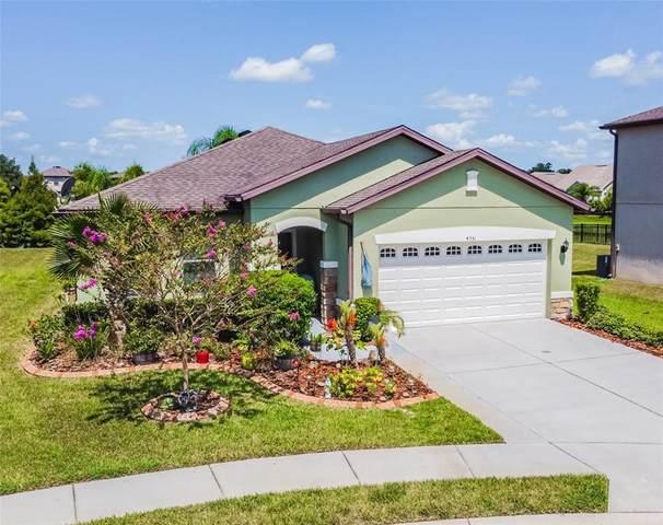 4351 O Rourke Court, Wesley Chapel, FL 33543 (MLS #T3320613) :: Zarghami Group