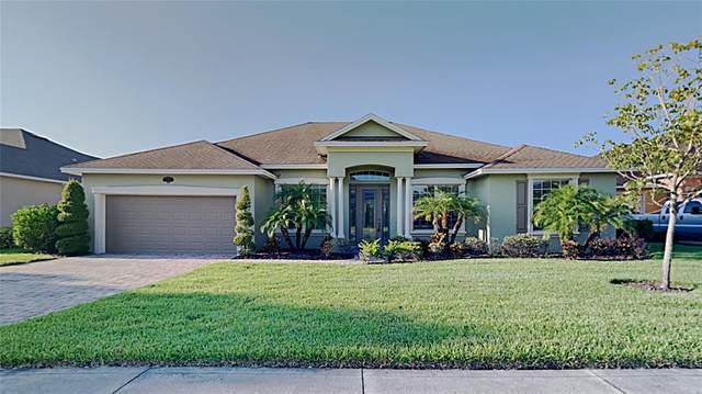 4330 Tokose Place, Lakeland, FL 33811 (MLS #T3320637) :: Bustamante Real Estate