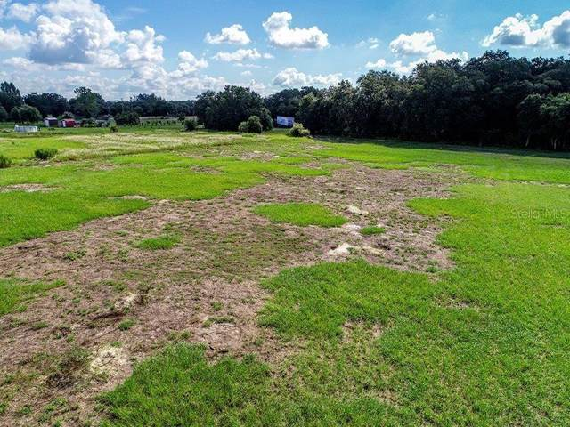 5208 Southern Dipper Lane, Wimauma, FL 33598 (MLS #T3320655) :: Zarghami Group