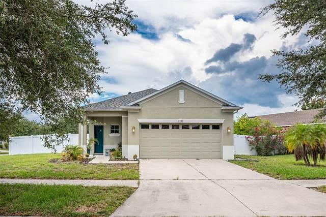 8233 Summer Wood Lane, Riverview, FL 33578 (MLS #T3320687) :: Zarghami Group