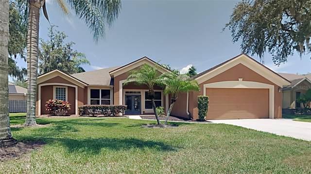 1063 Shimmering Sand Drive, Ocoee, FL 34761 (MLS #T3320688) :: Rabell Realty Group