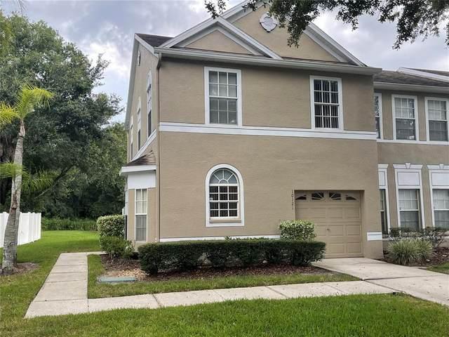 10121 Farmingdale Place, Tampa, FL 33624 (MLS #T3320699) :: The Robertson Real Estate Group