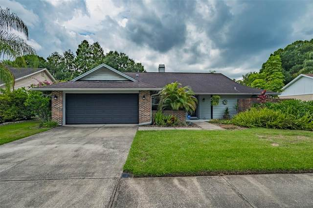15116 Barby Avenue, Tampa, FL 33625 (MLS #T3320720) :: Zarghami Group