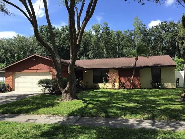 5314 Black Pine Drive, Tampa, FL 33624 (MLS #T3320728) :: Zarghami Group