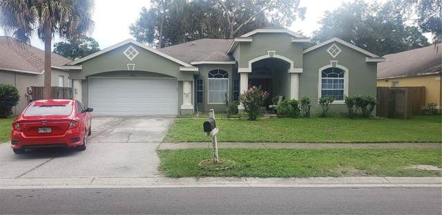 3726 Cold Creek Drive, Valrico, FL 33596 (MLS #T3320737) :: The Robertson Real Estate Group