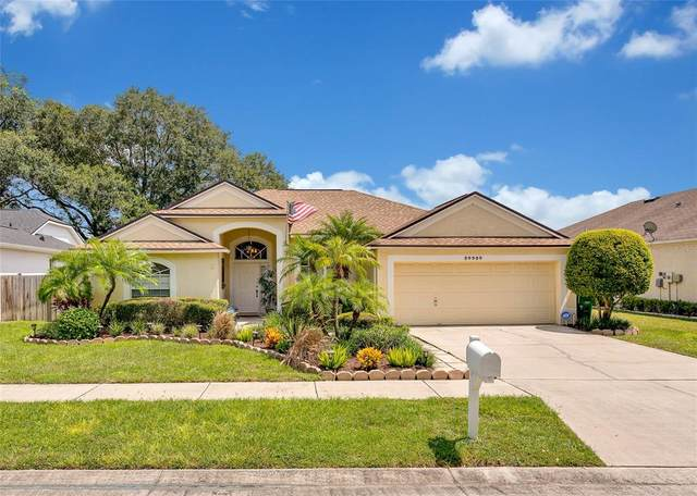 24404 Rolling View Court, Lutz, FL 33559 (MLS #T3320754) :: Gate Arty & the Group - Keller Williams Realty Smart