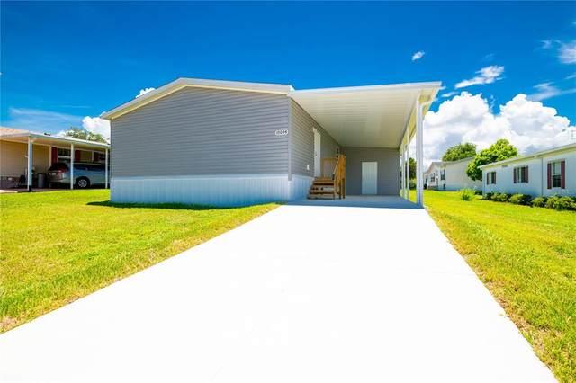 15054 Rialto Avenue, Brooksville, FL 34613 (MLS #T3320760) :: Cartwright Realty