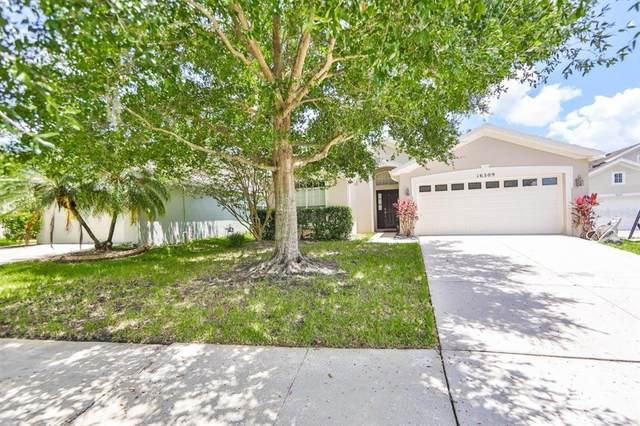 16309 Bridgeglade Lane, Lithia, FL 33547 (MLS #T3320764) :: The Robertson Real Estate Group