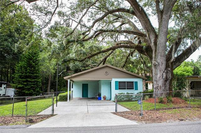 8117 N Dakota Avenue, Tampa, FL 33604 (MLS #T3320769) :: Keller Williams Realty Peace River Partners