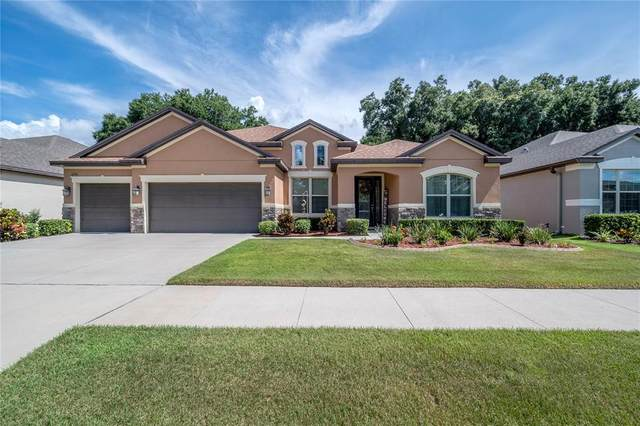 11336 American Holly Drive, Riverview, FL 33578 (MLS #T3320775) :: The Robertson Real Estate Group