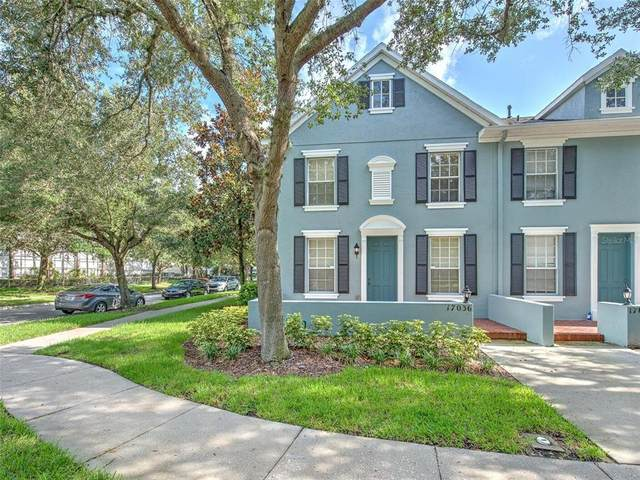17036 Dorman Road, Lithia, FL 33547 (MLS #T3320776) :: The Robertson Real Estate Group