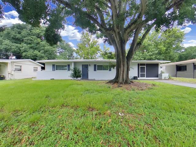 4517 S Clark Avenue, Tampa, FL 33611 (MLS #T3320788) :: Zarghami Group