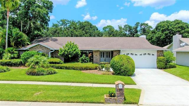 2312 Eagle Bluff Drive, Valrico, FL 33596 (MLS #T3320807) :: Vacasa Real Estate