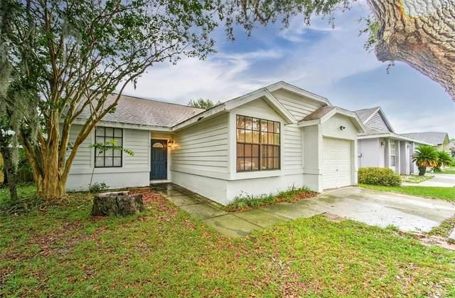 10265 Allenwood Drive, Riverview, FL 33569 (MLS #T3320810) :: Godwin Realty Group