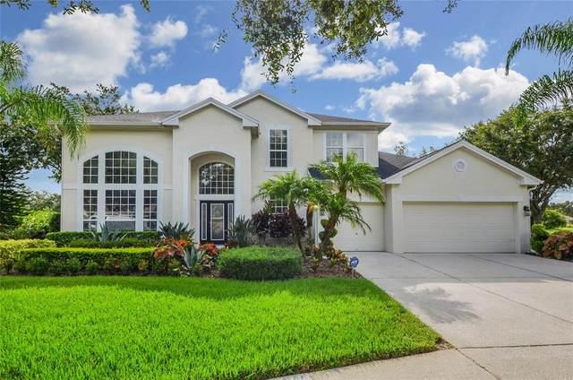 18107 Sugar Brooke Drive, Tampa, FL 33647 (MLS #T3320817) :: Team Bohannon