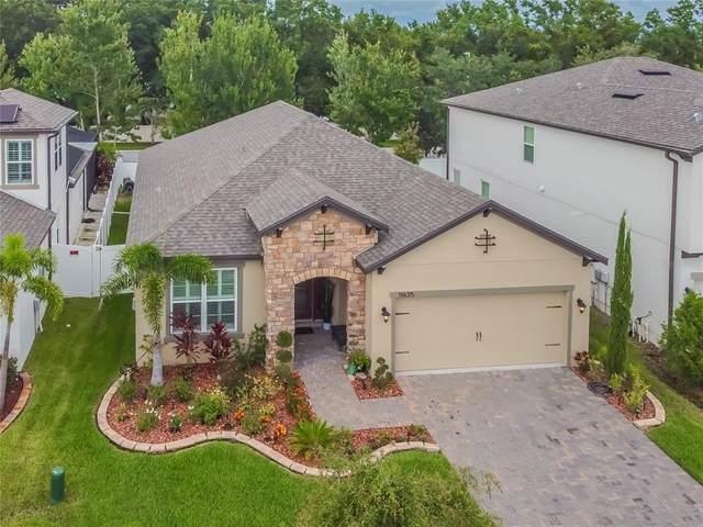 11635 Sweet Tangerine Lane, Tampa, FL 33626 (MLS #T3320841) :: Delgado Home Team at Keller Williams